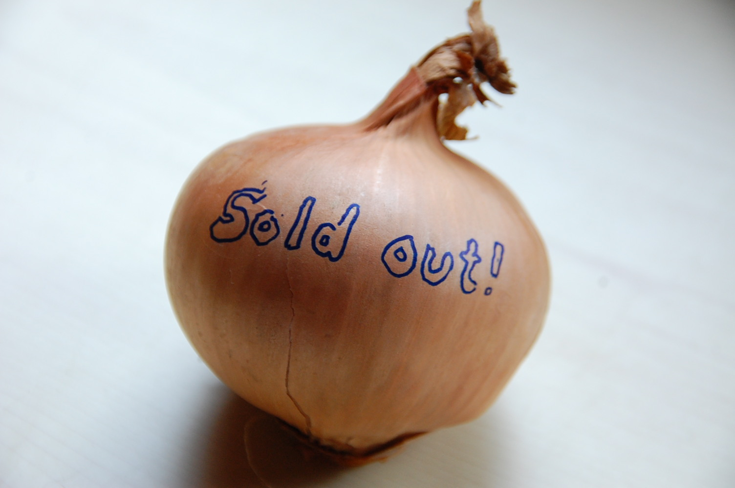 """A picture of an onion with """"sold out"""" wriitten on it. (not a St Helena onion)"""